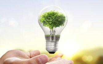 Conoce estos sencillos Tips y comienza a ahorrar Energía Eléctrica